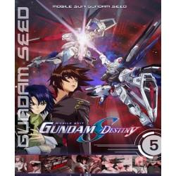 Gundam Seed Destiny (Versão Econômica)